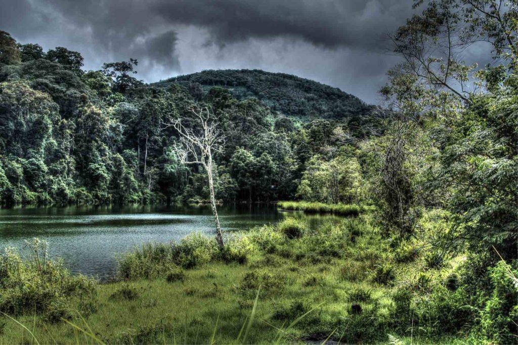 Wisata Jambi Danau Lingkat
