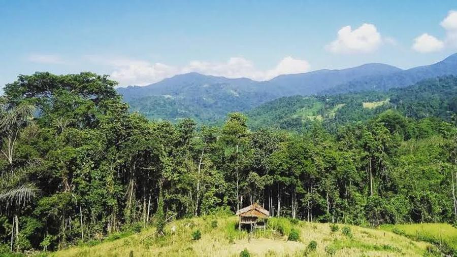 Wisata Sulawesi Tengah Taman Nasional Lore Lindu