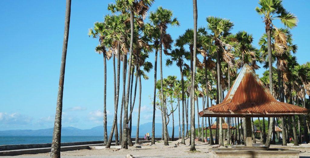 Wisata Kupang NTT Pantai Lasiana