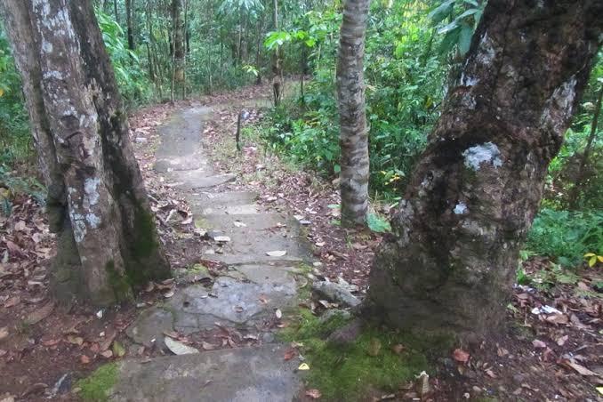 Perjalanan Menuju Pos Intai Bukit Vandering, Bengkayang