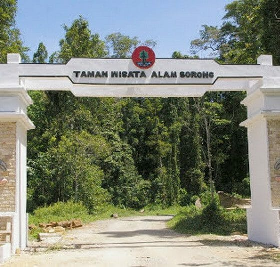 Wisata Papua Barat Taman Burung Aimas Sorong